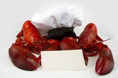 Lobster on the Menu. Two cooked whole lobsters holding a menu or recipe card with a chefs hat royalty free stock image
