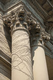 Two Corinthian Columns Royalty Free Stock Photography
