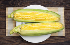 Two corn cob Stock Photo