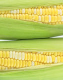 Two corn. Fresh two color corn with green peel Stock Photo