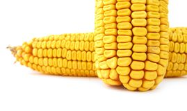 Two corn maize kernels Stock Photos