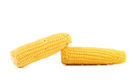 Two corncobs on a white background Royalty Free Stock Photos