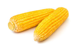 Two corns Stock Photo