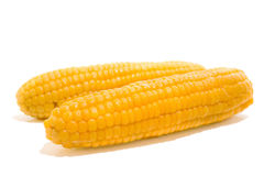 Two corns Royalty Free Stock Photography