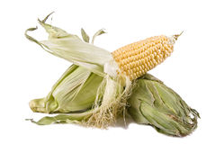 Two corns left on top Royalty Free Stock Image