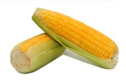 Two corns on white background. Two corns isolated on white background Stock Images