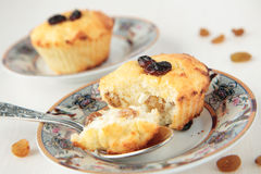 Two cottage cheese gratin with raisins Royalty Free Stock Image