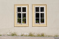 Two cottage windows Stock Photography