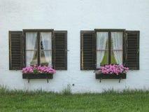 Two Cottage Windows Stock Image