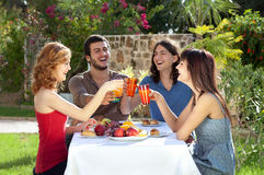 Two couples celebrating, dining and tosting with drinks. Two couples celebrating seated around a table in a lush garden having a meal laughing and toasting each Royalty Free Stock Image