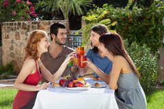 Two couples celebrating outdoors, toasting. Royalty Free Stock Photos