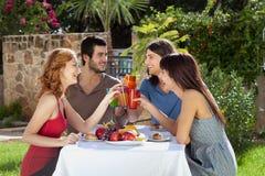 Two couples celebrating outdoors, toasting. Royalty Free Stock Photos