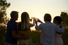 Two couples on a rooftop making a toast at sunset, back view Stock Photo