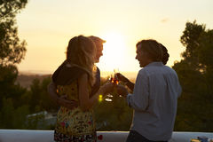 Two couples on a rooftop making a toast at sunset, low light Royalty Free Stock Photos