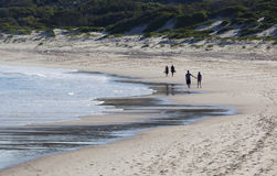 Two couples walk on a beach. Fingal Bay. Australi Royalty Free Stock Photography