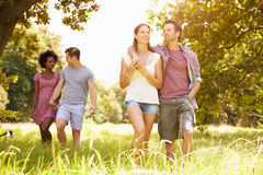 Two couples walking together in the countryside royalty free stock images