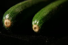 Two courgettes on black background Stock Images