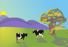 Two cows. Two Frisian cows in a pastural scene with tree Stock Photography