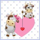 Two Cows. On a background of heart stock illustration