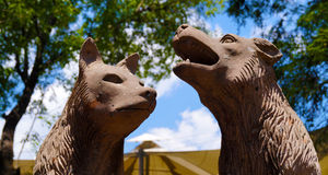 Two coyote heads sculpture. A sculpture in coyoacan mexico, two coyote heads, one howling and other just looking royalty free stock image