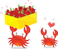 Two crabs Royalty Free Stock Image