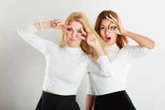 Two crazy girls playing around together. Stock Photography