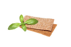 Two crispbread slices and basil Royalty Free Stock Images