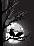Two crows. Two black crows sitting on the tree branch Stock Illustration