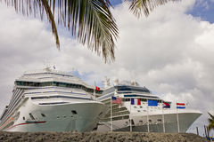 Two Cruise Ships Past Palm Tree Stock Photography