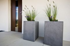 Two cubic concrete flower pots at front door of a house Royalty Free Stock Photography