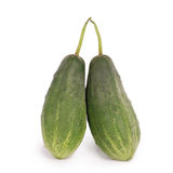 Two cucumber Royalty Free Stock Photo