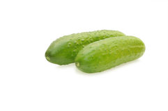Two cucumbers isolated on white Royalty Free Stock Photos