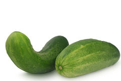 Two cucumbers isolated on white background Stock Images