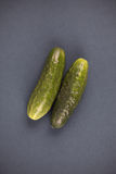 Two Cucumbers Royalty Free Stock Photo