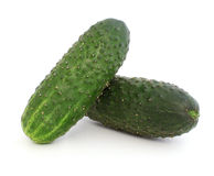 Two cucumbers with pimples Stock Photography