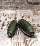 Two ucumbers Stock Image
