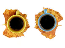 Two cup of coffee, autumn concept Stock Image