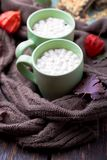 Two cup of coffee or hot chocolate with marshmallow near knitted blanket and pie. Autumn concept. Christmas. Royalty Free Stock Photos