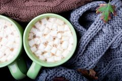 Two cup of coffee or hot chocolate with marshmallow near three knitted grey, black and brown sweater or  knitted blanket. Autumn c Stock Images