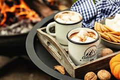 Free Two Cup Of Cocoa Or Hot Chocolate And Marshmallows Stock Photography - 159506372