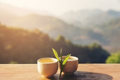 Two cup with tea leaf on table over mountains landscape with sun Stock Photos