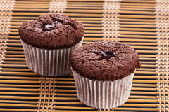 Two cupcake chocolate muffins Royalty Free Stock Photo