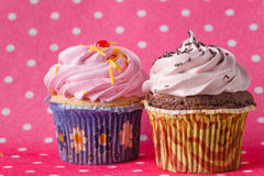 Two Cupcake on colored pink backround Royalty Free Stock Image