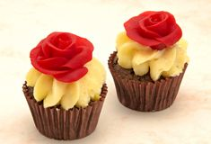 Two cupcakes Royalty Free Stock Photo