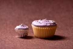 Two cupcakes or muffins with hazelnut and raspberry topping Stock Image