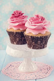 Two cupcakes royalty free stock photography