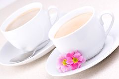 Two Cups Royalty Free Stock Image