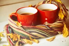 Two cups and a blanket against the window with rain drops and leaves / warming the atmosphere in the rainy time Stock Image