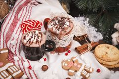 Two cups of cocoa Royalty Free Stock Photos