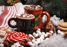 Two cups of cocoa Royalty Free Stock Images